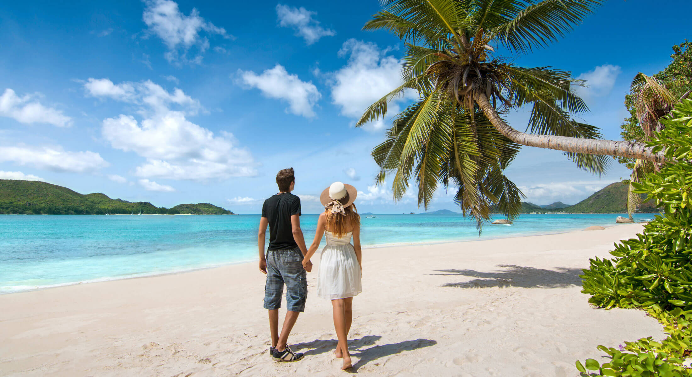 Couple wandering along tropical beach
