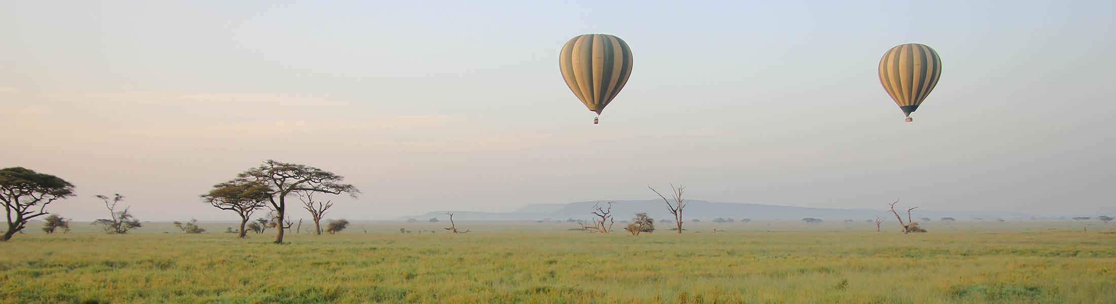 Hot Air Balloons over the African Savannah