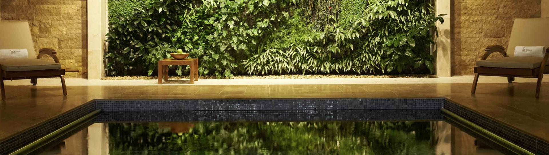 Sofitel The Palm, Dubai - spa pool