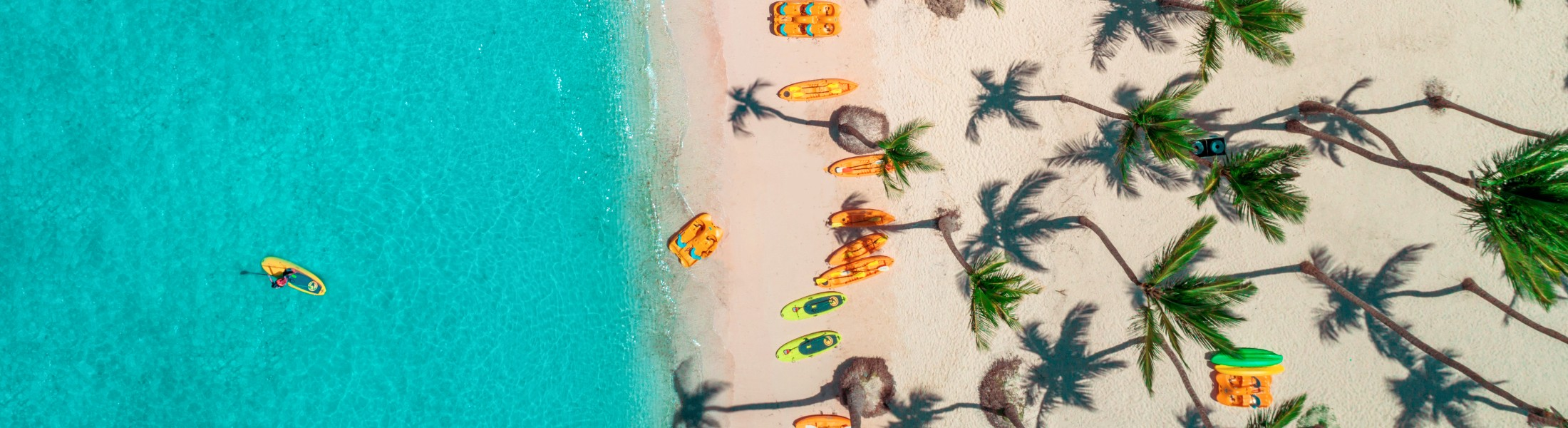 Aerial view of a Caribbean beach with palm trees
