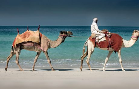 Camel rides on the beach at Ritz-Carlton Dubai