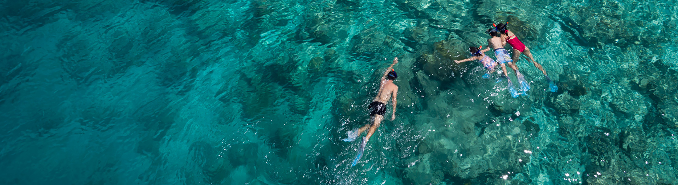 Aerial of couple snorkelling at Anantara Dhigu Resort