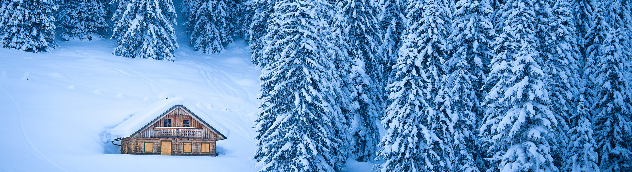 Ski lodge surrounded by conifers in the snow