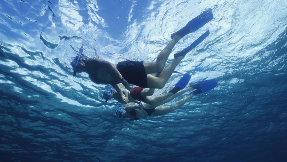 People snorkelling at St James Club Morgan Bay