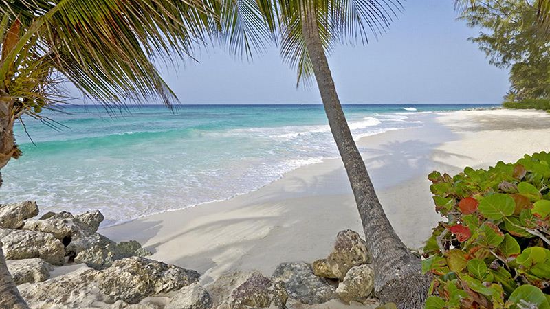 Beach at Turtle Beach by Elegant Hotels Barbados