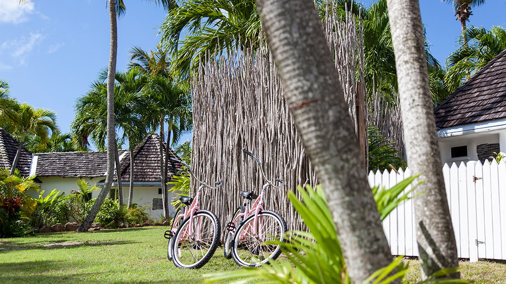 bicycle under palm trees at Galley Bay Resort & Spa