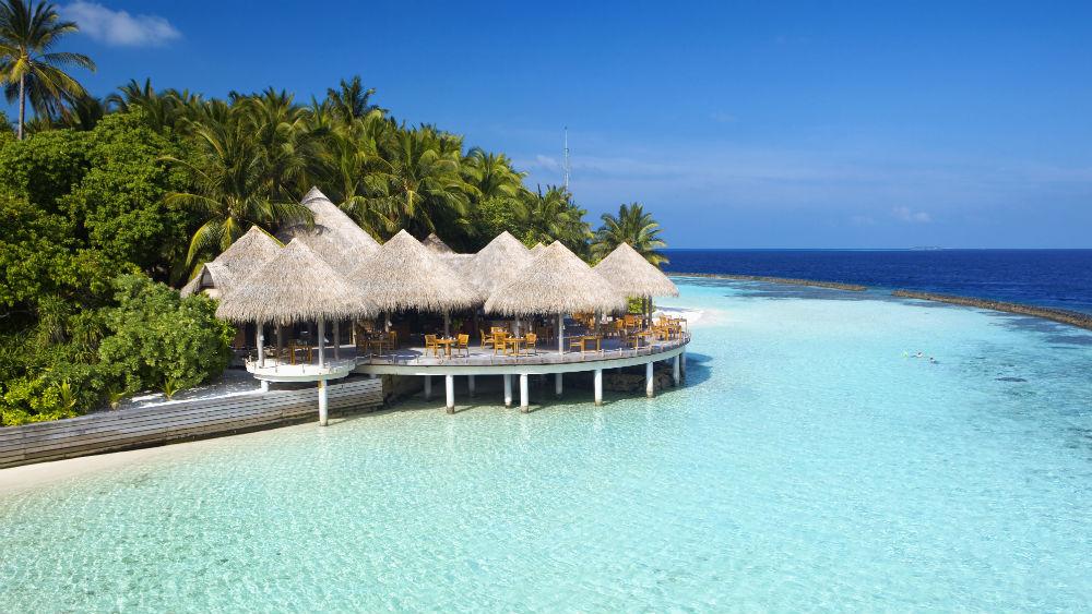Cayenne at the Baros Maldives