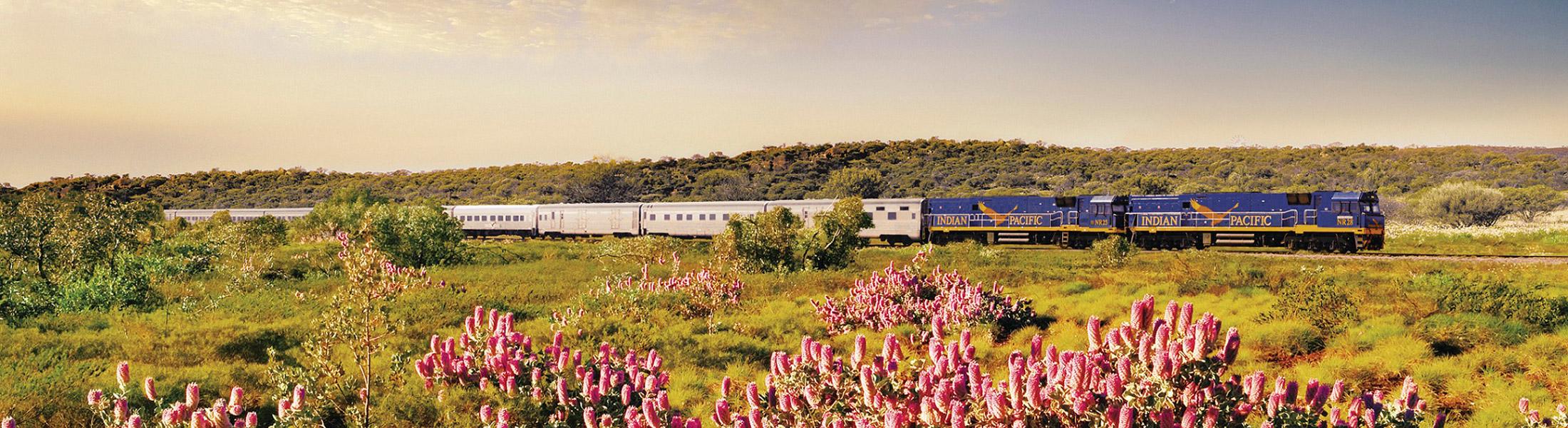 Indian Pacific train in Australia