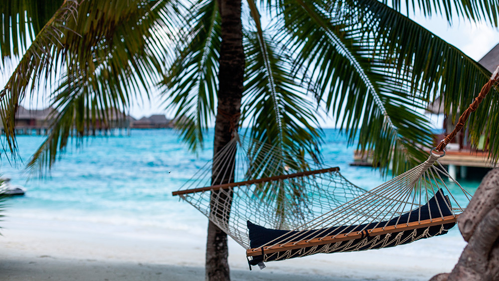 Hammock between palm trees on the beach at Constance Halaveli