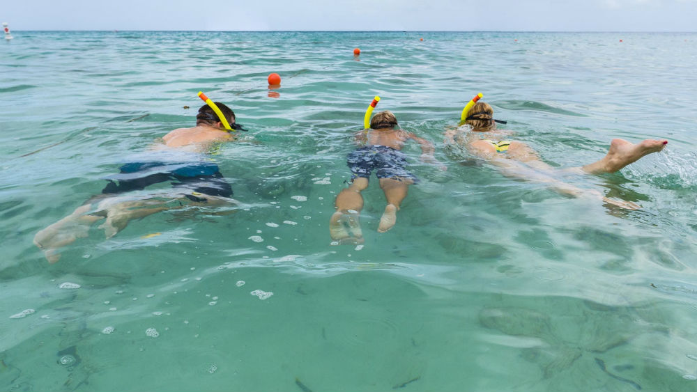 snorkelling with the family at the Waves Hotel & Spa by Elegant Hotels