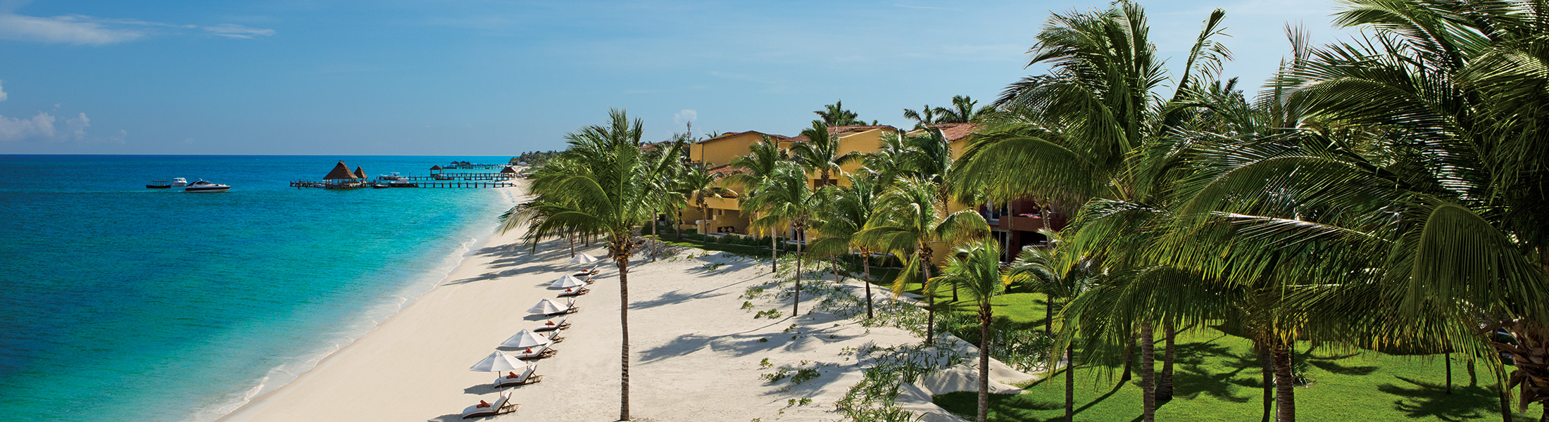 Beach with palmtrees at Zoetry Paraiso de la Bonita