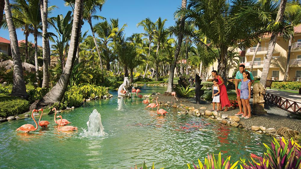 Family at the Flamingo Pond at Dreams Punta Cana