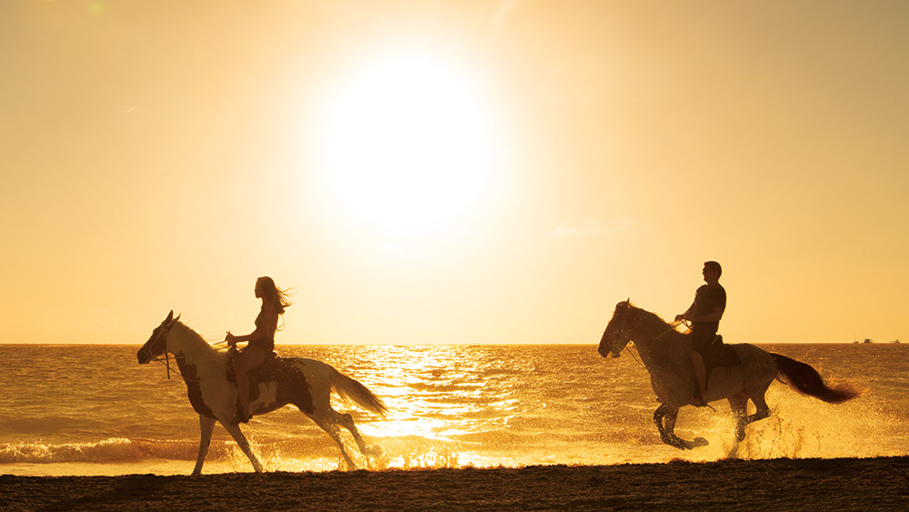 Couple riding horses at sunset on the beach at Secrets Royal Beach