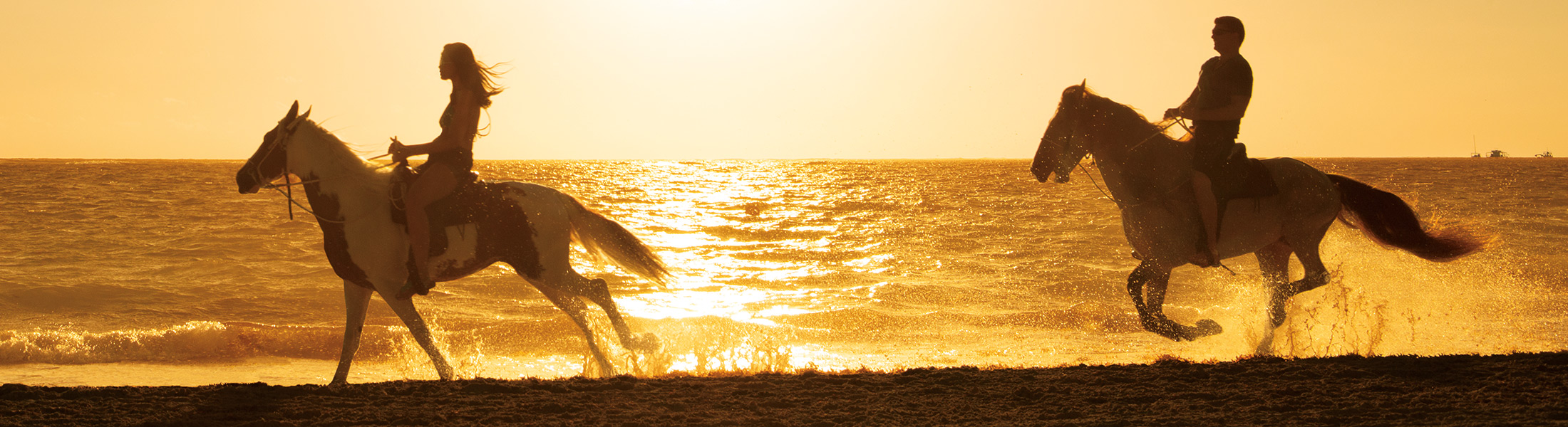 Couple riding horses in the sunset at the beach at Secrets Royal Beach