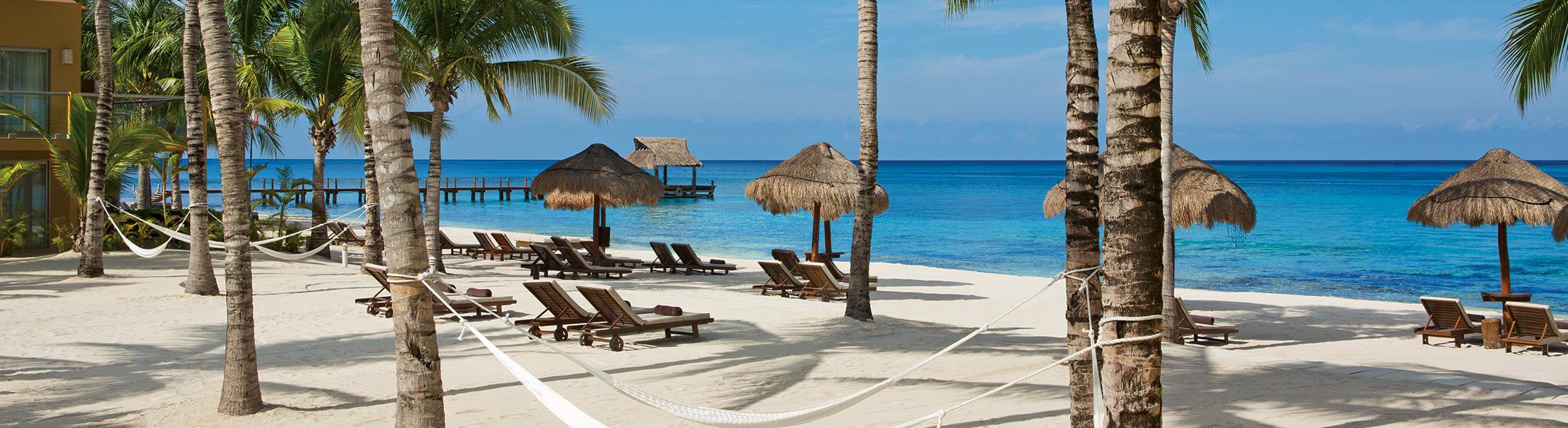 Hammocks & sun loungers between palm trees on the beach at Secrets Aura Cozumel