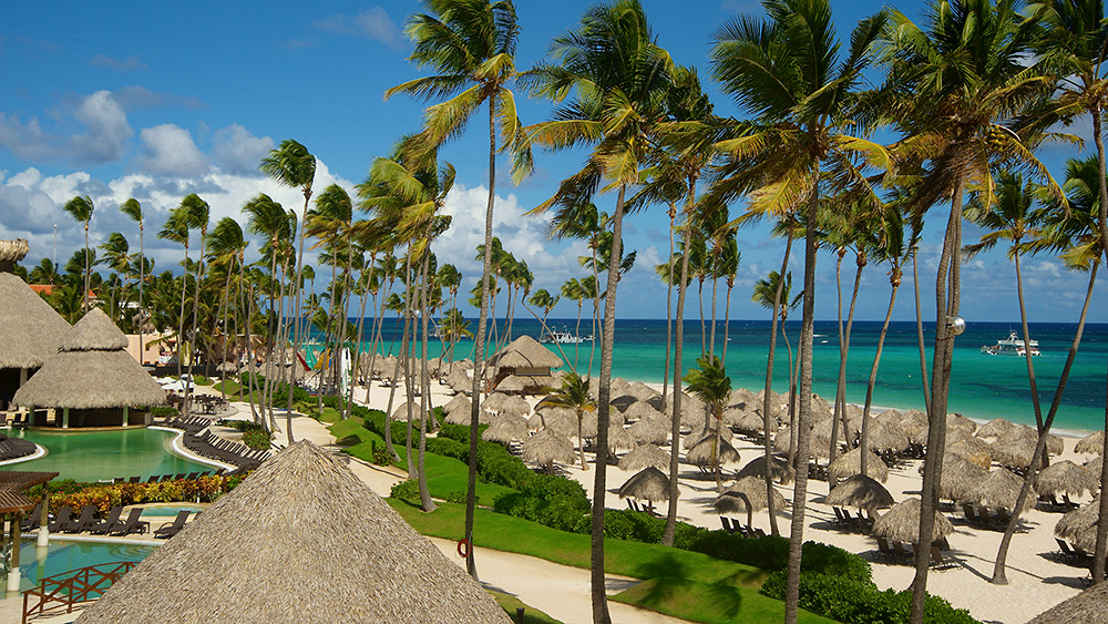 Palm tree lined beach with sun loungers at Secrets Royal Beach