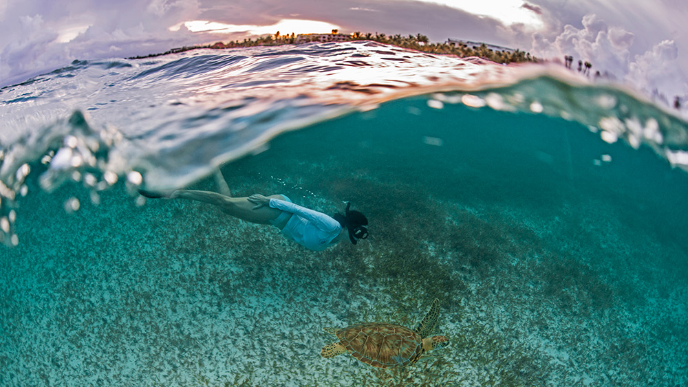 Woman snorkelling with a turtle at Secrets Akumal