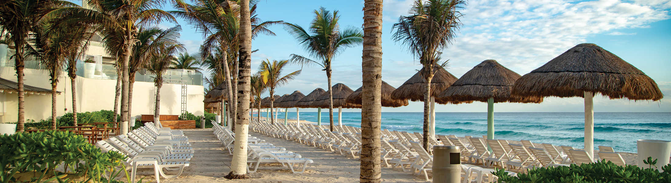 Sun loungers and palm trees on the beach at Now Emerald