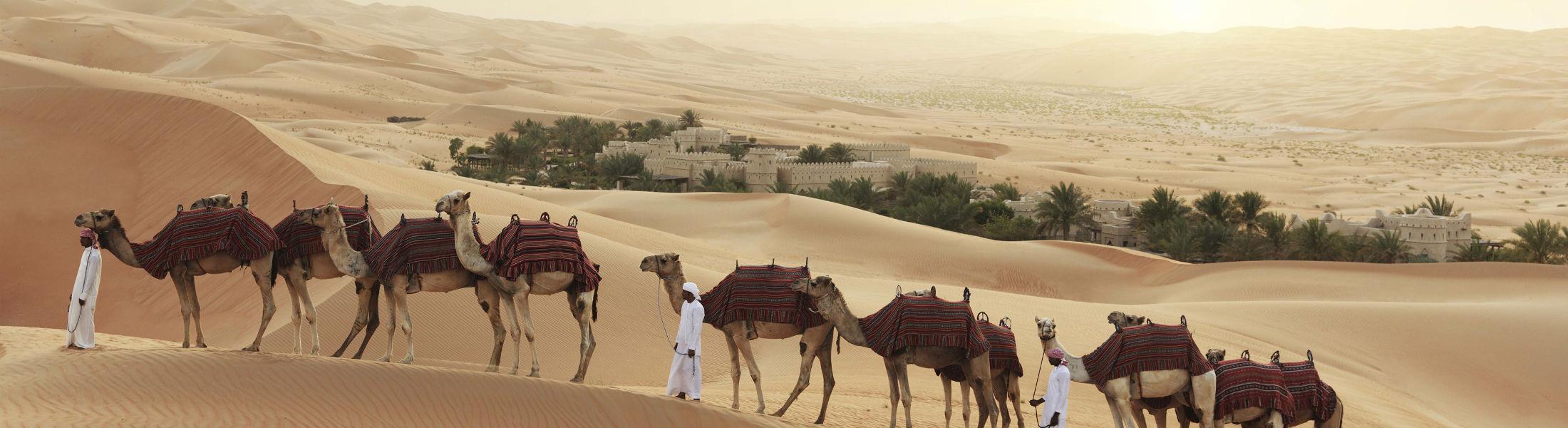Camels Qasr Al Sarab Desert Resort