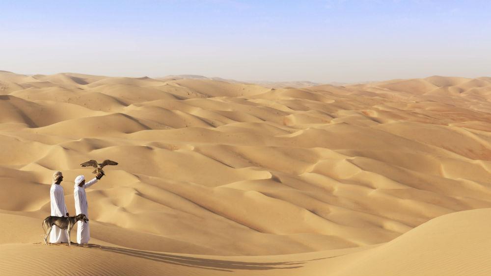 Falconry Qasr Al Sarab Desert Resort