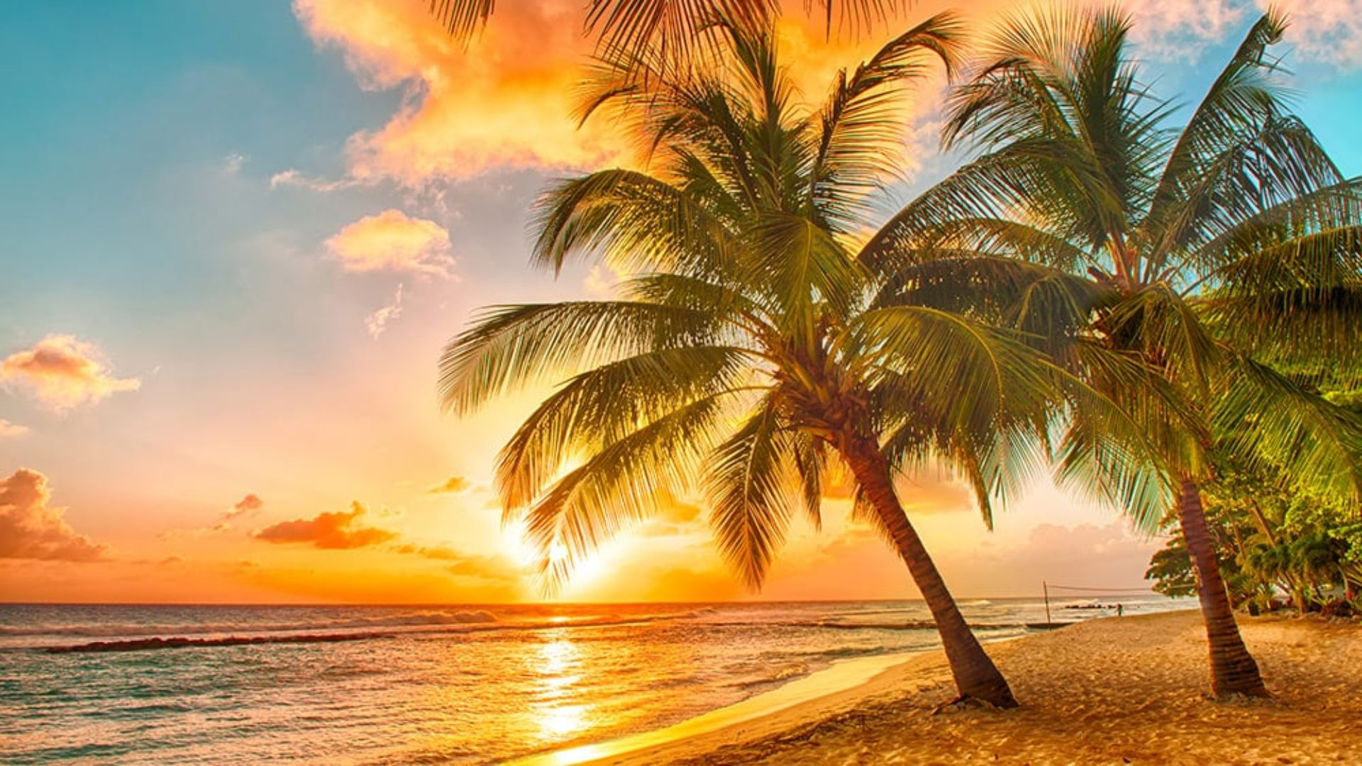 Sunset on a beach in Barbados on a USA & Caribbean multi-centre