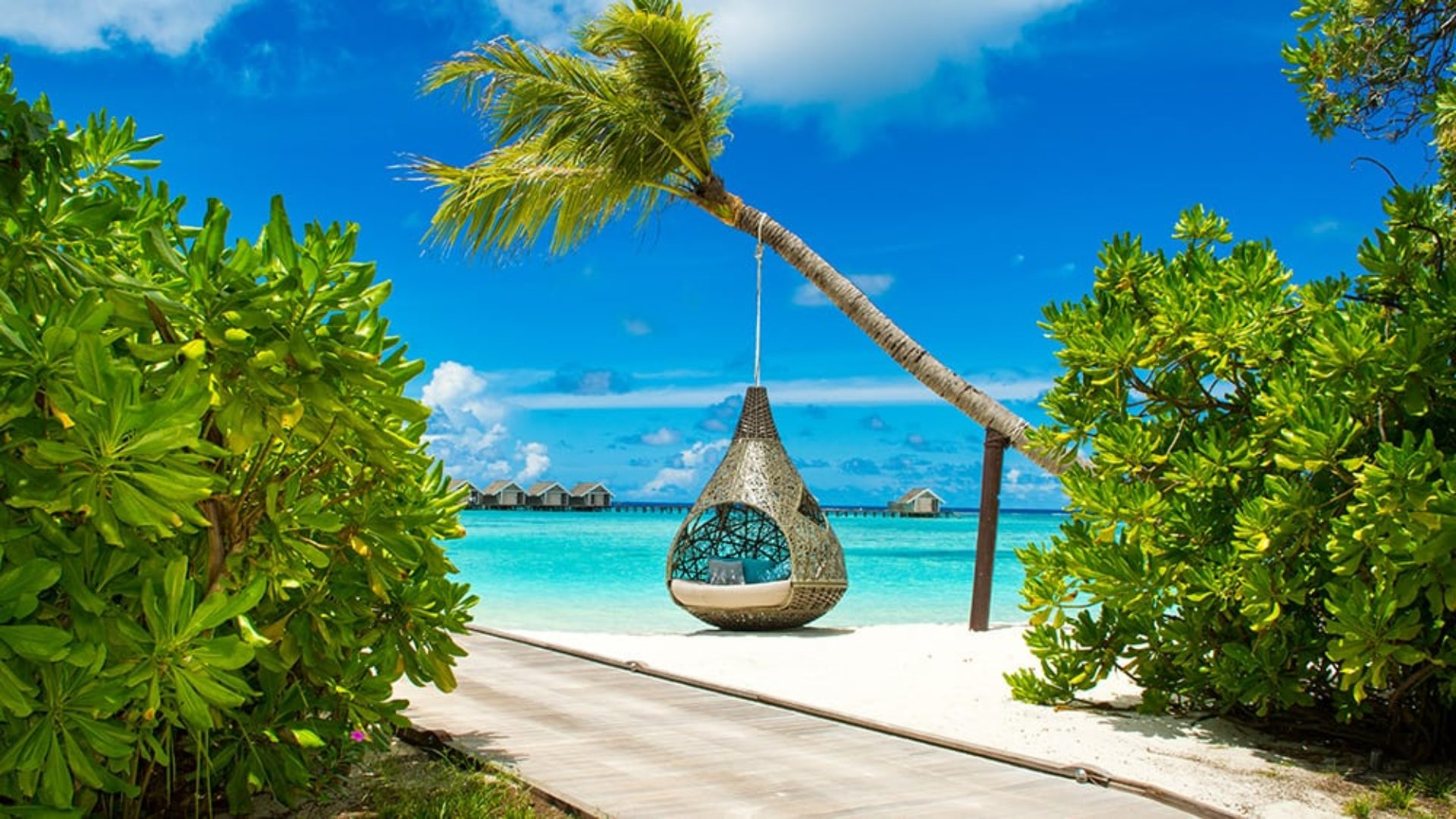 Hanging chair on the beach on a Maldives & Dubai twin-centre
