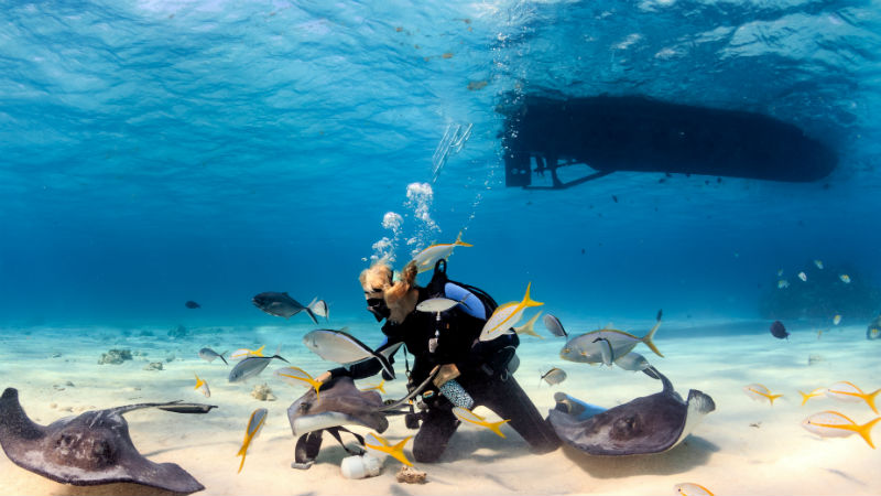 scuba diving in Barbados