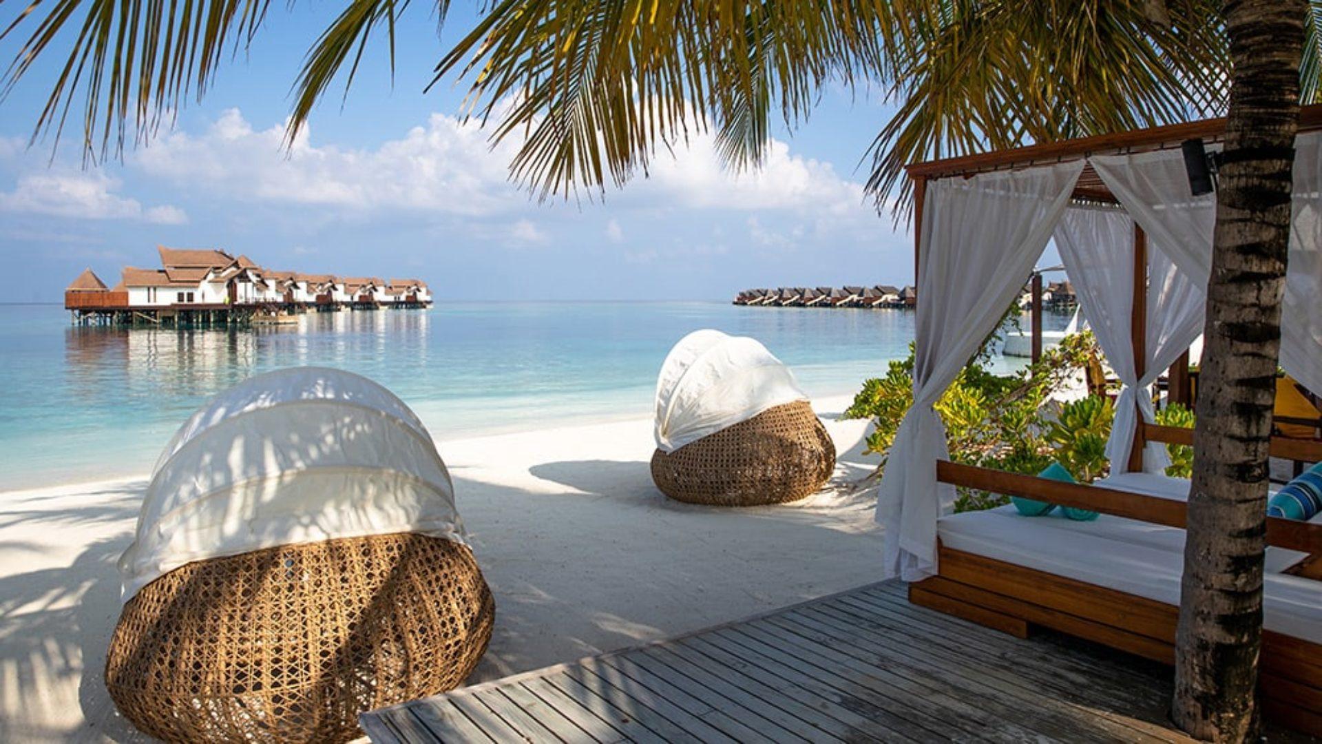 Beach loungers and a cabana under palms at Jumeirah Vittaveli