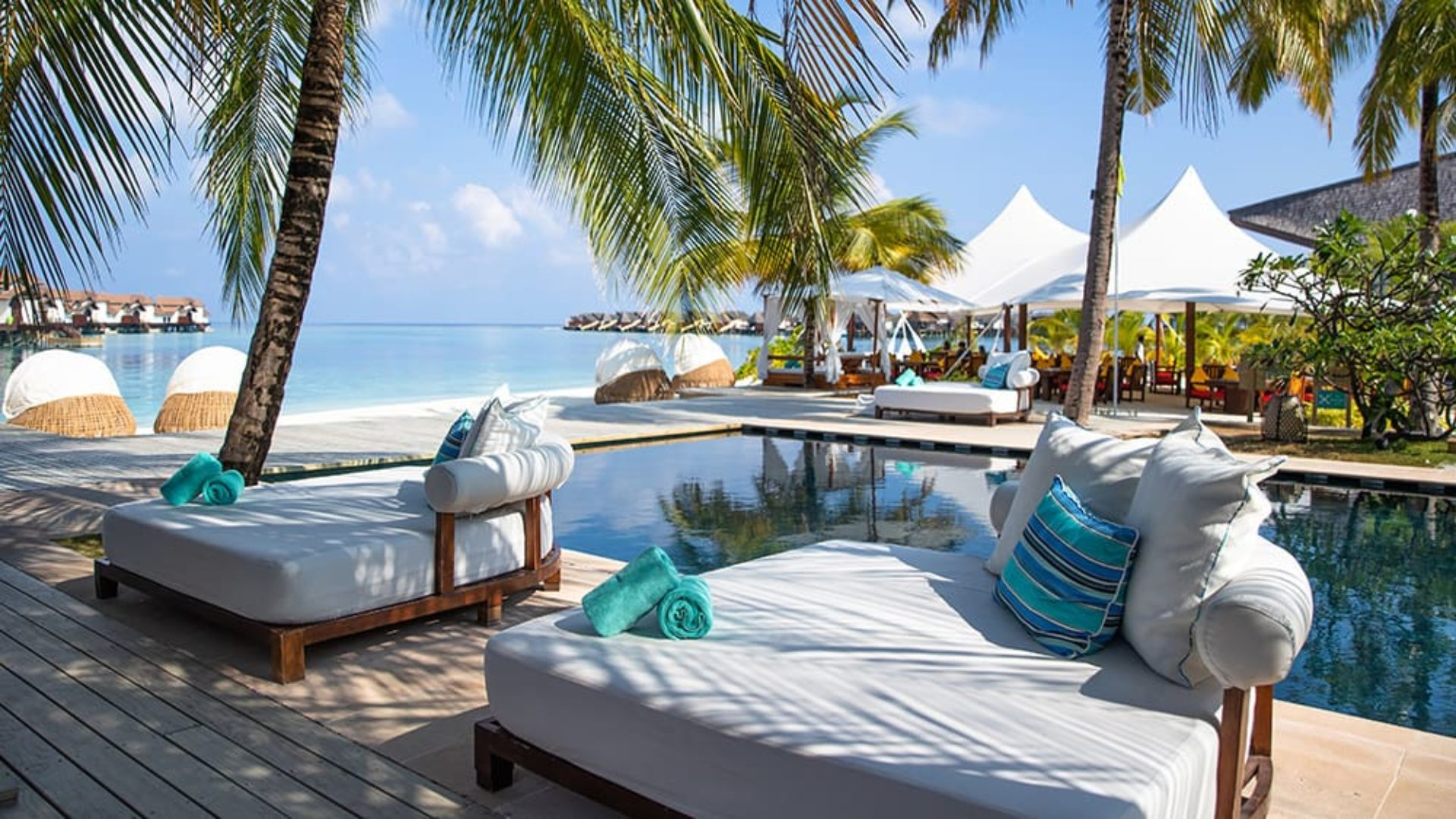 Pool loungers under palm trees at Jumeirah Vittaveli