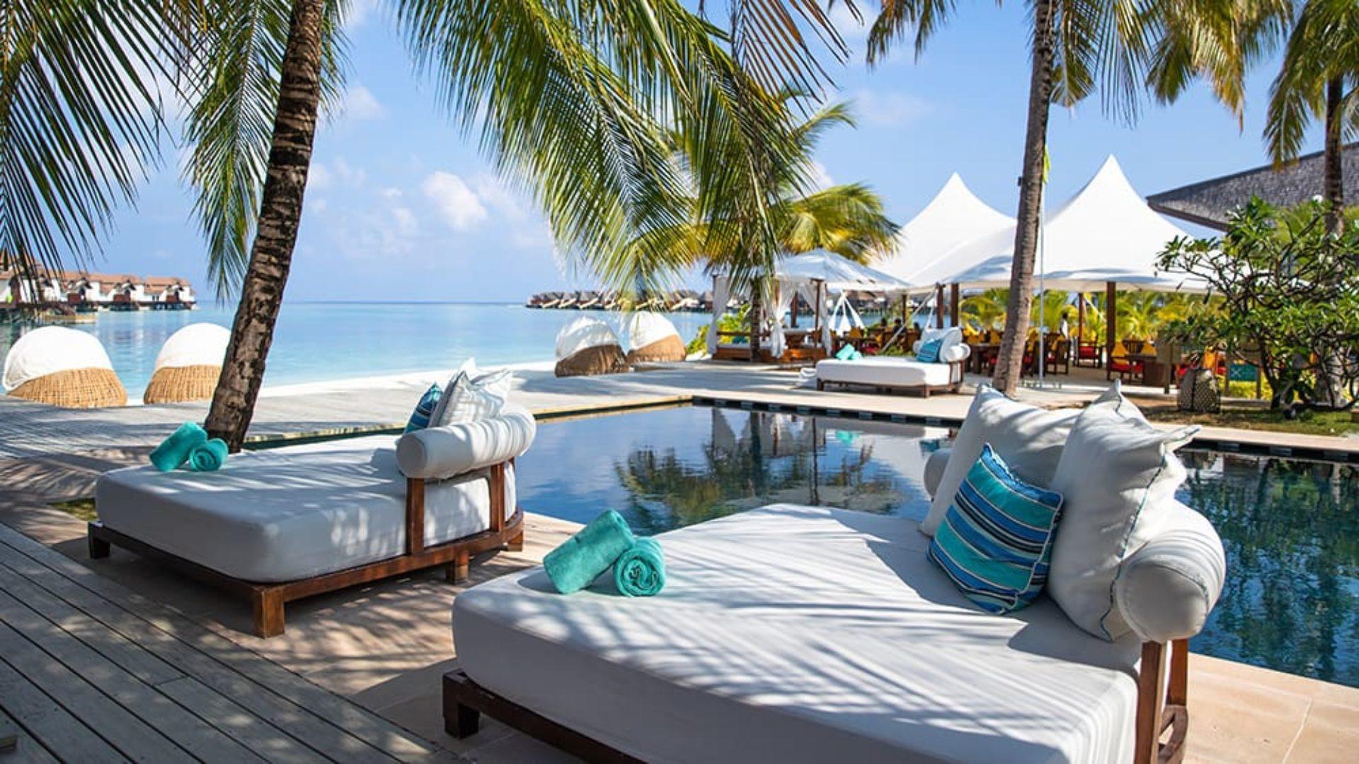 Pool loungers under palm trees at Jumeirah Vittaveli